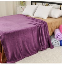 Coral Fleece Blankets Various Sizes and Colors